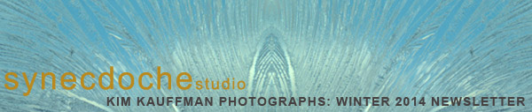 Synecdoche Studio Photographs of Kim Kauffman